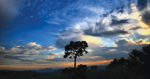 Eucatastrophe The Hidden Gift in Catastrophe
