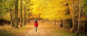 Mission Woman Walking