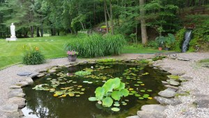 AMI Summer Retreat