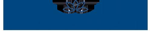 AMI Logo Horizontal Transparent b