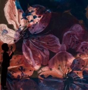LillianKronau Artwork