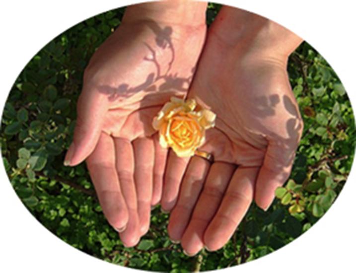 open hands lg