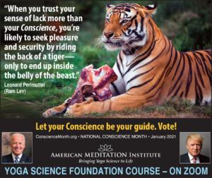 Back of Tiger NCM C